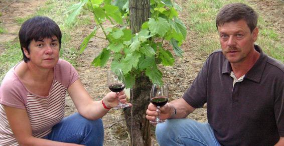 Vente en bouteilles, fontaine à vin et vrac - Château Camp Del Saltre
