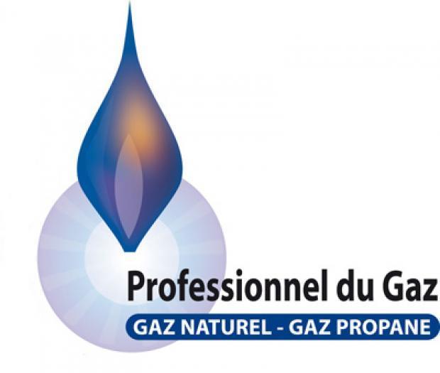 LOGO Professionnel GAZ.jpg