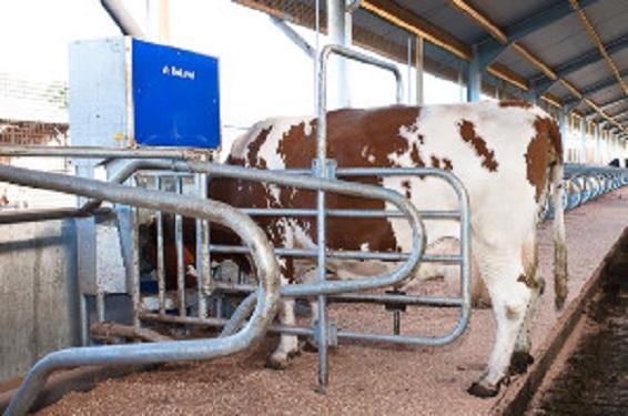 Matériel d'élevage STATION DAC