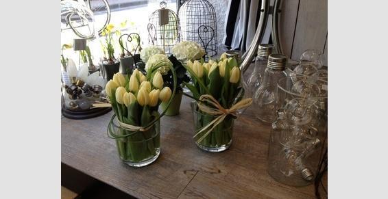 .Composition printanière de tulipes