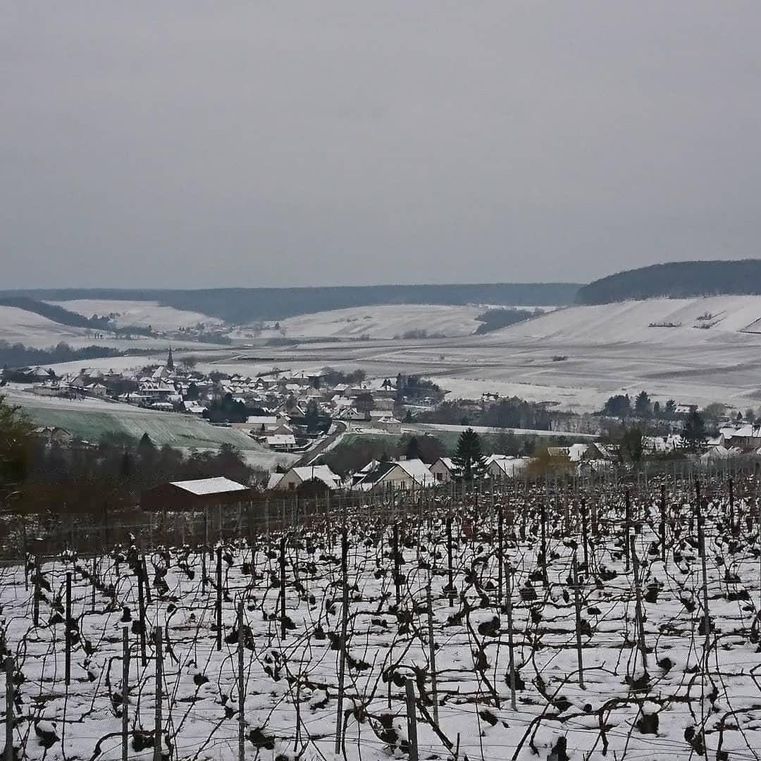 La neige sur Festigny 2018