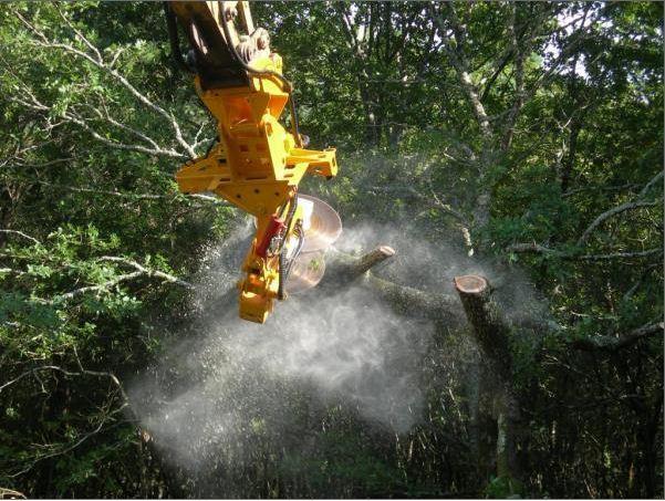 Coupe ciblée la machine fait le tour de l'arbre