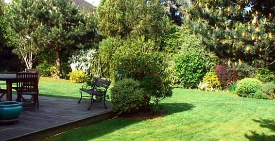 Paysagiste - plantation, engazonnement, terrasse