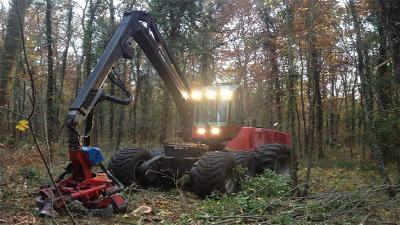 silvaex-sourdun-77-idf-jarno-coupe-arbre-debardage-abattage-bois-forêt-centre-region-tronçonneuse-valmet-camion-transporteur-tempête-vent
