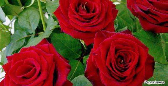 Compositions florales personnalisées - Fleuriste