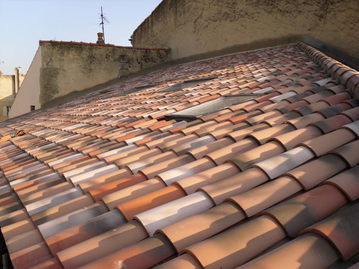 Les toits sont aussi protégés