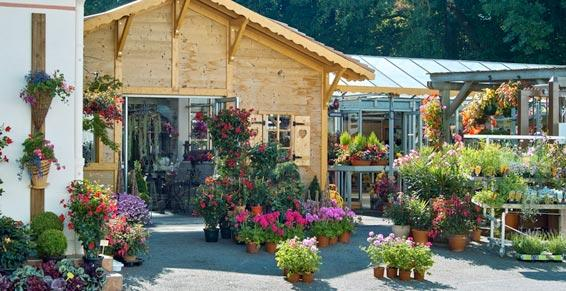 Fleuriste, plantations