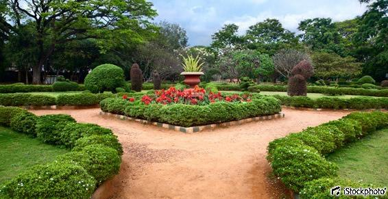 Aménagement de jardins et parcs à Sorède