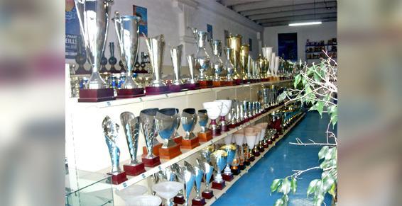 Coupes insignes trophées