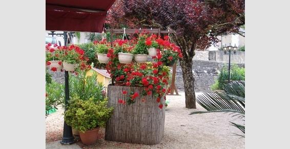 Terrasse fleurie du restaurant l'Esplanade à Rocamadour