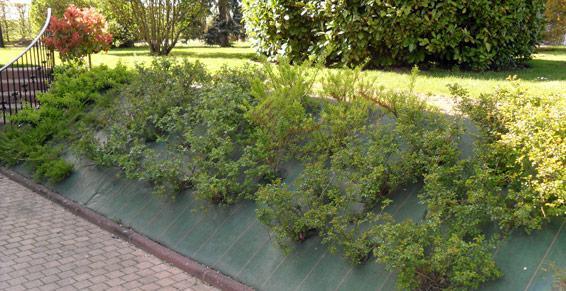 Création et entretien de parcs et jardins