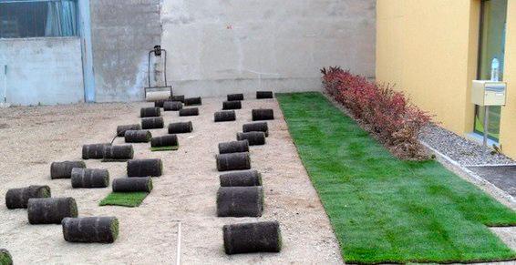 Thiers Paysages effectue l'engazonnement de votre jardin à Thiers