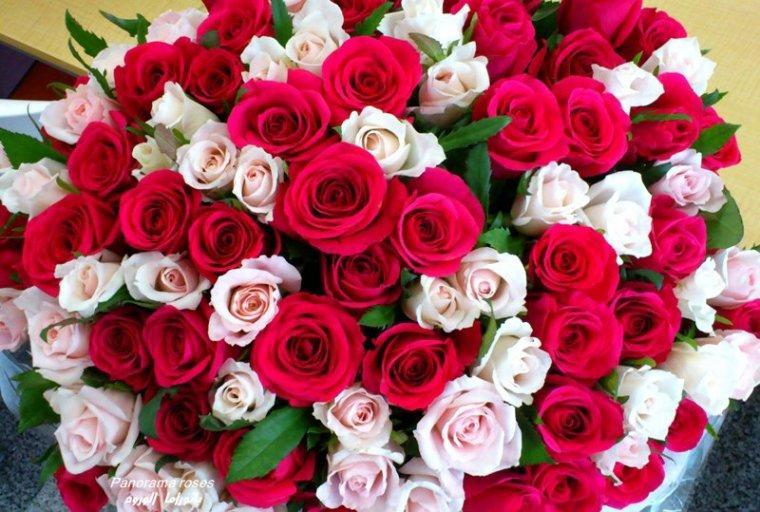 jolie bouquet de roses