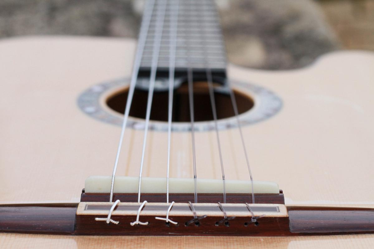 Guitare nylon GN20111510