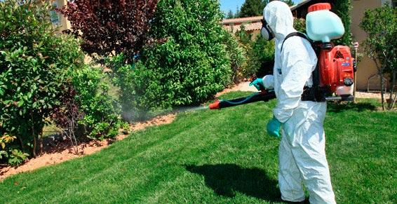 Paysagistes - pulvérisateur à insecticide