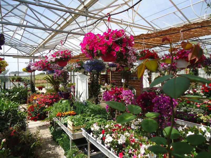 Espace de vente au printemps à La Londe les Maures
