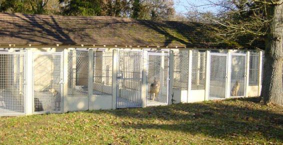Pension pour chiens et chats - 24 box de 16m² avec courette