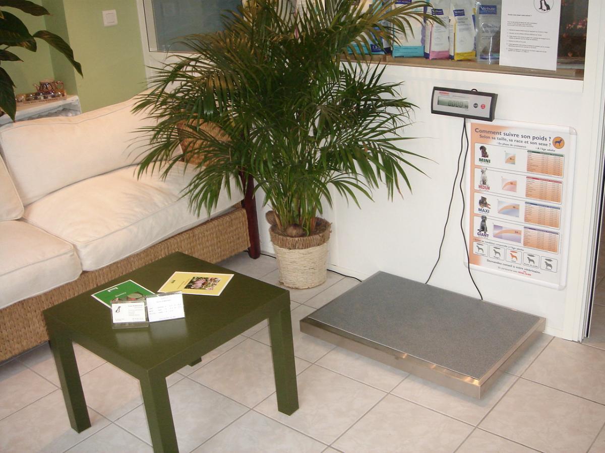 Balance pour vos animaux disponible dans la salle d'attente